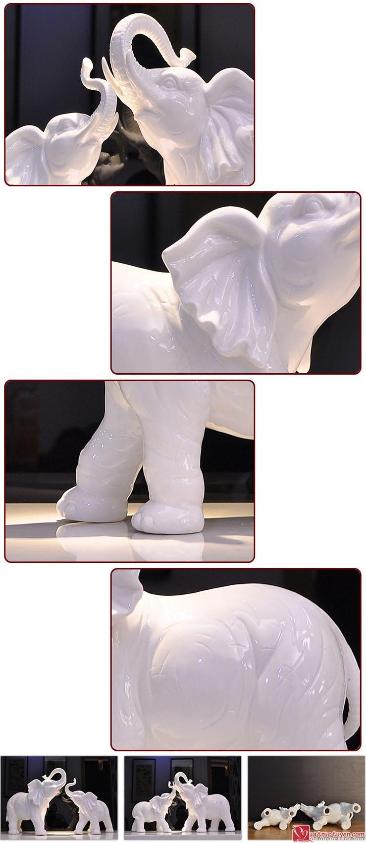 doi-voi-phong-thuy-loai-lon-04